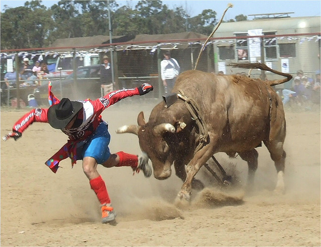 Rodeo Clown Faces http://skydoginstitute.com/category/mercury/