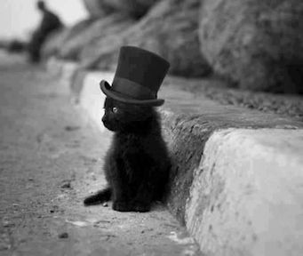 black-kitten-in-top-hat2.jpg